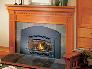Fireplace Xtrordinair - 32 DVS Gas Fireplace Insert spa brokers