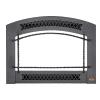 small photo of tray xtrordinair 33 DVI fireplace insert Spa Brokers